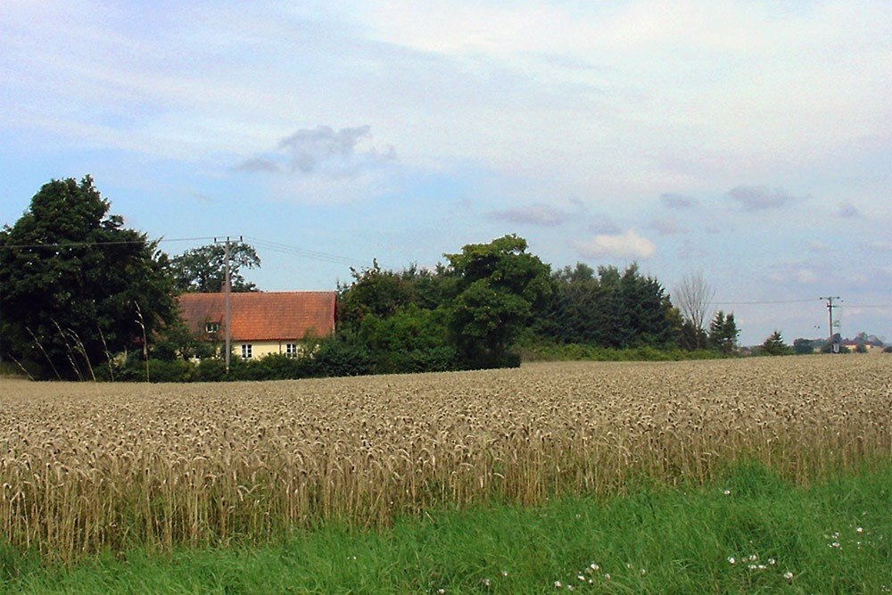 Fält med bostadshus i bakgrunden
