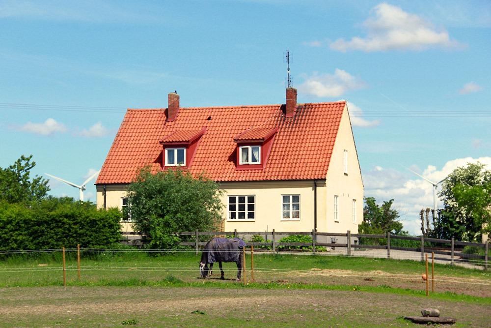Bild på gult hus med häst i förgrunden